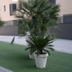 Plantenbak PB40 2